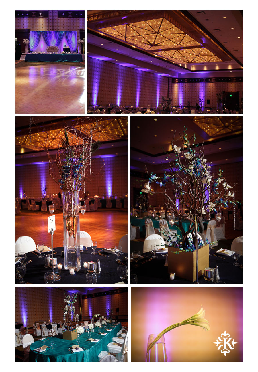 Austin wedding photographer Tony Ku photographs an Indian wedding reception in downtown Hilton Hotel, Austin, Texas. (2)