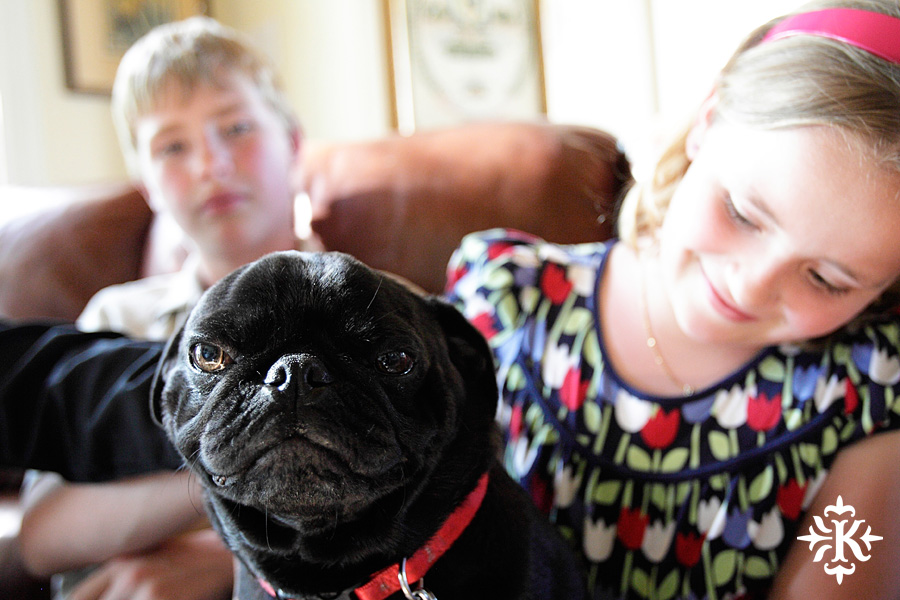 Austin wedding photographer takes a photo of a pug with kids at a Horseshoe Bay wedding